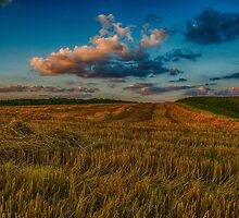 Sunset over the cornfield by Mark Bangert