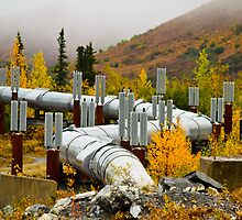 Alaska pipeline by raymona pooler