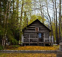 Alaskan Wlderness home by raymona pooler