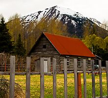Wlderness home Alaska by raymona pooler