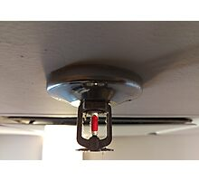 fire sprinkler, d Photographic Print