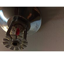 fire sprinkler, e Photographic Print