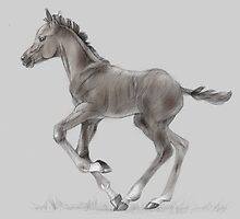 Drawing portrait of running foal by Julia Shepeleva