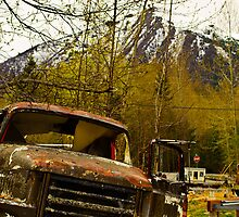 Old rusty truck by raymona pooler