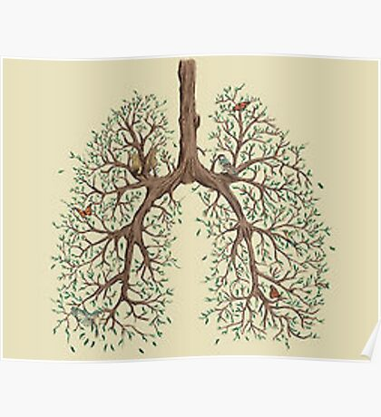 Tree Lungs Poster