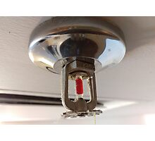 fire sprinkler, i Photographic Print