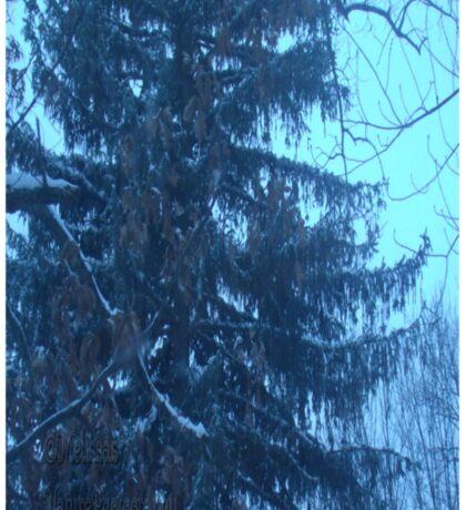 Snow scene Sticker