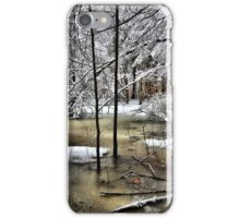 Late February Snowfall - A Hint of Color iPhone Case/Skin