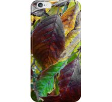 Nature Has Been Recycling For Ages  iPhone Case/Skin