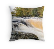 Stainforth Force Throw Pillow