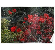 Through A Window Waters Raining Poster