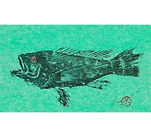 Black Sea Bass on Aegean Green Unryu Paper Photographic Print