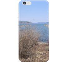 Early Spring on Otsego Lake iPhone Case/Skin