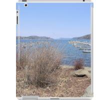 Early Spring on Otsego Lake iPad Case/Skin