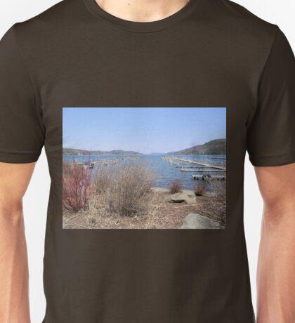 Early Spring on Otsego Lake Unisex T-Shirt