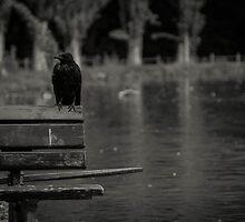 Grim by AleWasThere