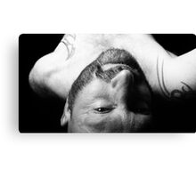 Troy- Laid Back 1 Canvas Print
