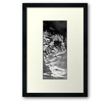 ©TSS The Sun Series IX Monochrome Framed Print
