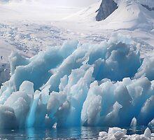 Iceberg, Cierva Cove, Antarctica by Carole-Anne