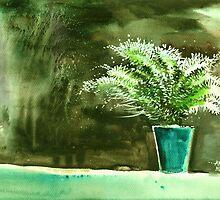 Bay window plant by Anil Nene