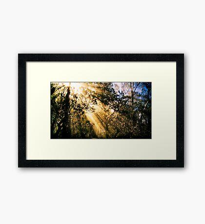 Mountain Light Framed Print