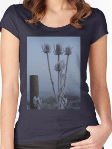 Teasel in the freezing fog Women's Fitted Scoop T-Shirt