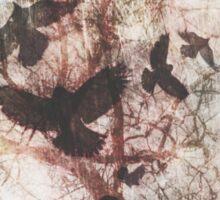 Ravens Sticker
