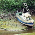Boat ashore by Arie Koene