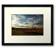 Outback Australia Northern Territory - Bush Scene Framed Print