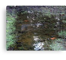 just another puddle in the garden Canvas Print
