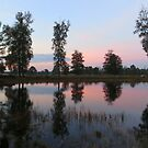 Lake Mirror by ienemien