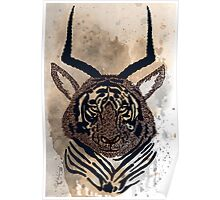 Tiger - antelope Poster