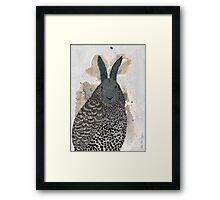Hare - owl Framed Print