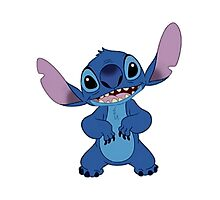Stitch is cute Photographic Print