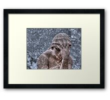 Weeping Angel #3 Framed Print