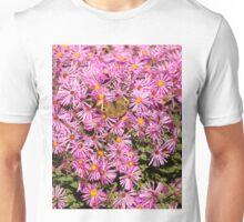 Common Buckeye and Aster 2013-1 Unisex T-Shirt