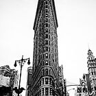 The Flatiron Building by A.David Holloway