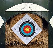 Archery statistics by Arie Koene