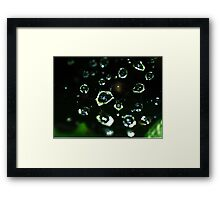 Web Droplets Framed Print