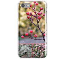 Essex in Winter Collage iPhone Case/Skin