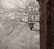 Snow lamp by shilohfreddi