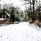 Winter's Long Walk Home by A.David Holloway