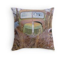 Weathered Friend Throw Pillow