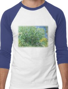 Vincent Van Gogh - Lilacs Men's Baseball ¾ T-Shirt