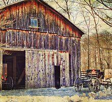 Amish Snowmobile by vigor