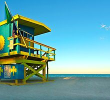 Clover Lifeguard House and Birds by lattapictures