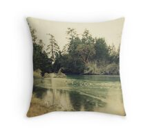 Ice on Puget Sound Throw Pillow