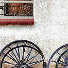 Amish Wheels by Polly Peacock