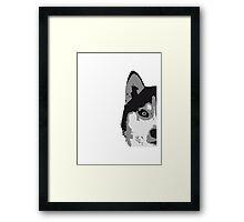 Half Husky Face Framed Print