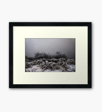 """""""Winter Snowstorm"""" Framed Print"""